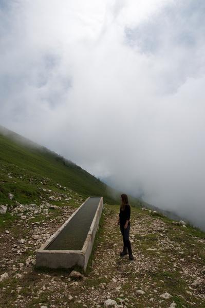 Kuhtränke auf dem Weg zum Monte Stivo