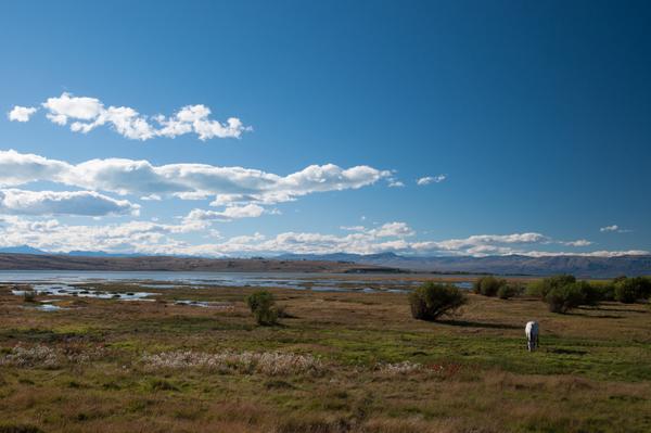 Ufer des Lago Argentino
