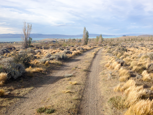 Trail Running in El Calafate
