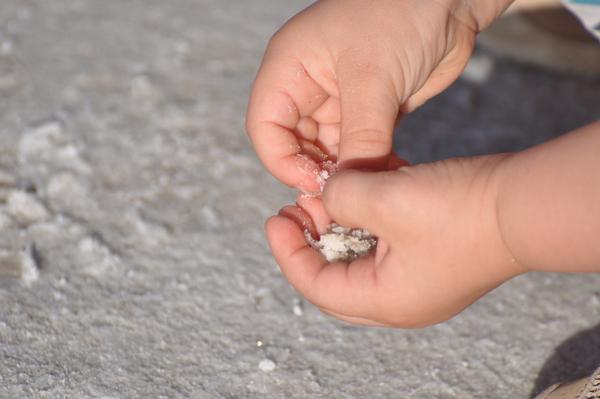 Hermine spielt mit Salz
