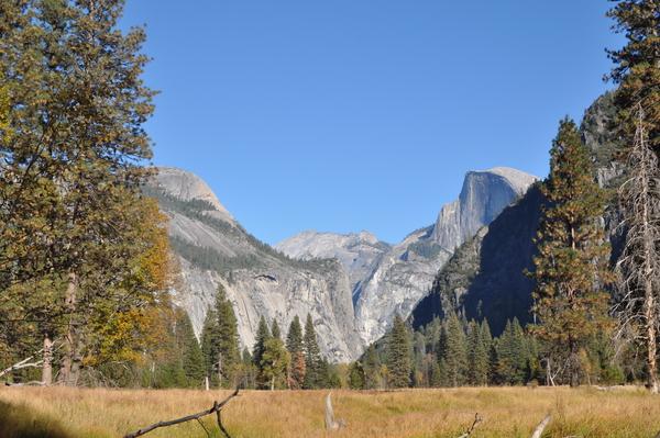 Das Valley war früher Sumpfgebiet